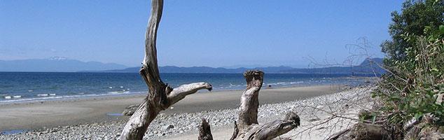 header-beach